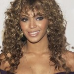 Naturally Curly Hairstyles 7
