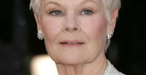 Judi Dench Hairstyle 19