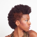 Afro Hairstyles 3