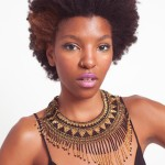 Afro Hairstyles 7