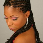 African Braids Hairstyles Picture