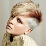 Punk Hairstyles 8