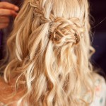Braided Hairstyles Image