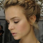 Braided Hairstyles Picture