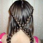 Braided Hairstyles Style
