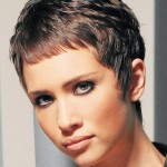 Cropped Hairstyles Design