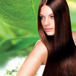 Hairstyle Posters For Salons Photo