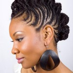 Natural Black Hairstyles for 2014